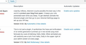 WordPress 5.5 automatische Updates manchmal problematisch